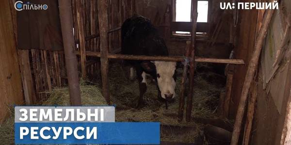"Land and agricultural cooperatives in hromadas featured in the new issue of ""Jointly"" programme"