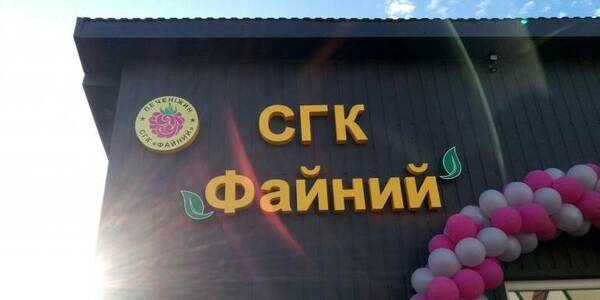 "Result of participation in ""Million-Hryvnia Hromada"" project: Pechenizhynska AH opened raspberry cooperative"